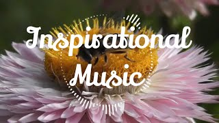Download Relaxing Music, Mp3 Juice, Tubidy, Mp3 to YouTube, Inspirational Music, Mp3, AMBITION OF THE HEAVEN🌙