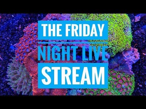Is The Aquarium Hobby DEAD? The Friday Night Live Stream