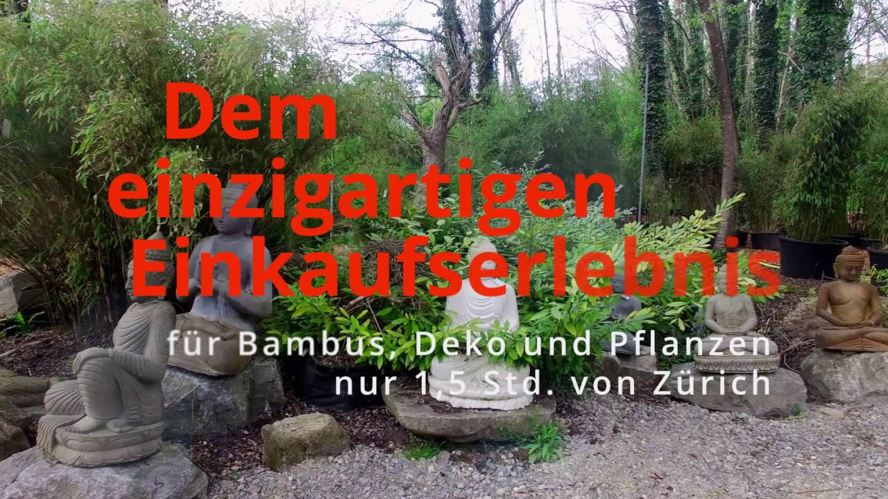 Gärtnerei Hofstetter Mühle Bambuswald Spot Youtube