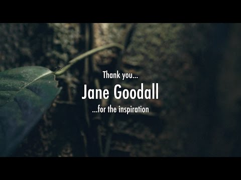 JANE GOODALL  Sowing the Seeds of Hope