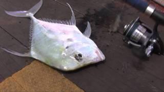 2011-07-03 - Fishing in Singapore