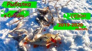 Рыбалка на сибирском озере первый лед зимняя рыбалка