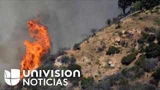Decenas de habitantes de Pacific Palisades, California, son evacuados debido a un incendio de maleza