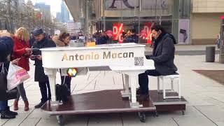 Antonio Macan LIVE in Frankfurt (fan made)
