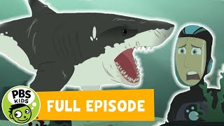 Wild Kratts FULL EPISODE! | Stuck on Sharks | PBS KIDS