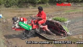 Redlands rice transplanter