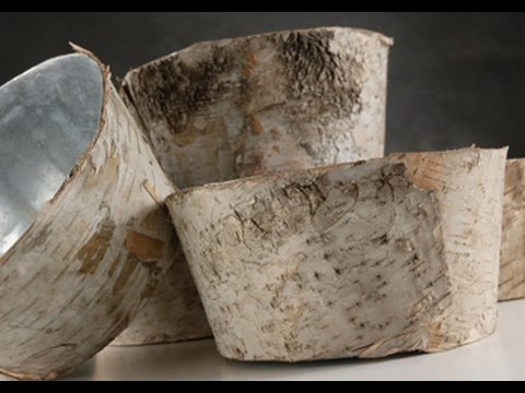 Birch Bark Vases Pots Planters Bowls1 Youtube