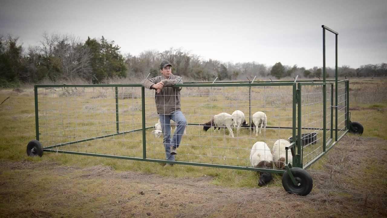 Sheep Tractor Company