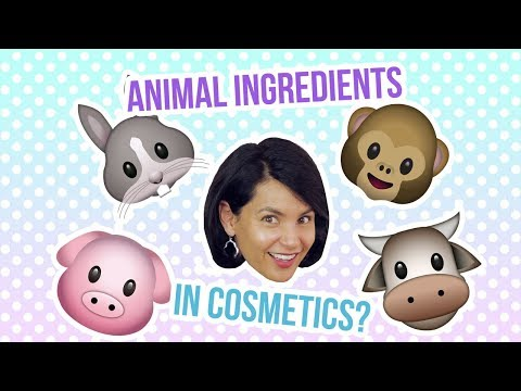 Q&A: How To Identify Animal Ingredients In Cosmetics? 🐰🐮🐷