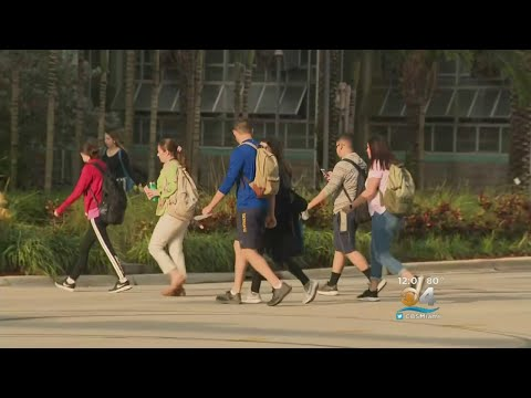 FIU Students Return To Class For First Time Since Bridge Collapse