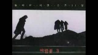바람꽃(Wind flower) - 비와 외로움(rain and loneliness) Rock ver.