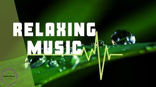 Soft Relaxing Piano music for Stress Relief | Meditation Music | Deep Sleep