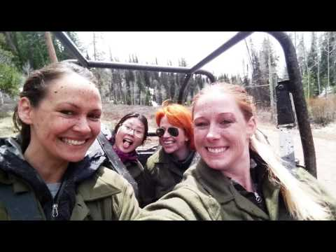 Our Yellowstone Loop Adventure