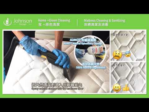 Mattress, Sofa Cleaning & Sanitizing 床褥、梳化清潔及消毒