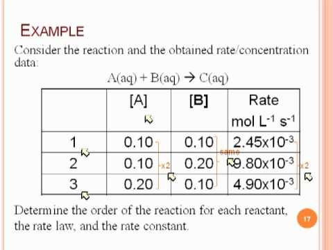 reaction order rate laws labpaq