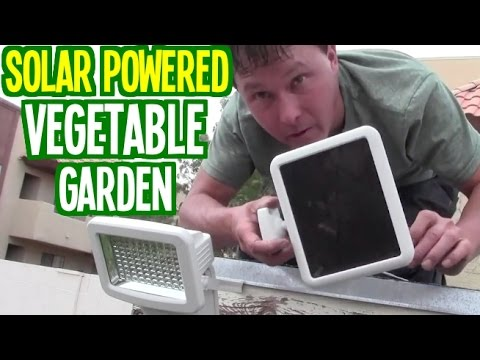 Solar Powered Vegetable Garden Grows Food Using Sun Power