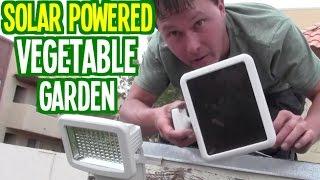 Solar Powered Vegetable Garden Grows Food Using Sun Power