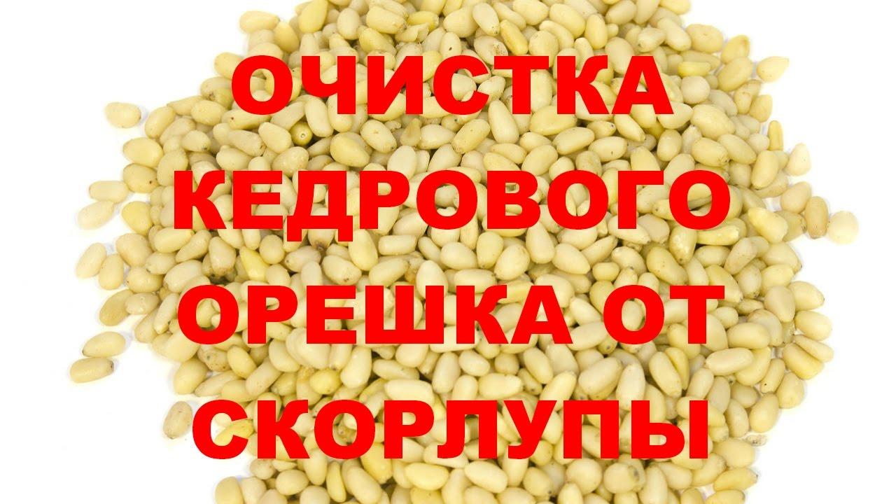 Школа травоведения. Занятие № 9 (3) КРАПИВА как чай и как .