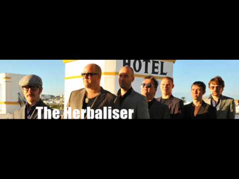 the herbaliser - the blend (j large remix)