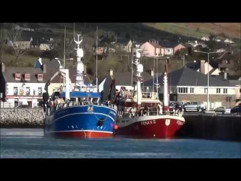 Fishing Boats Landing At Dingle Pier.