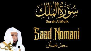 Murottal Quran Surah Al Mulk - Saad Nomani   Maqam Ajam/Jiharkah