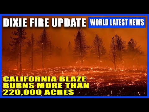 Dixie Fire: California's largest fire burns over 220,000 acres