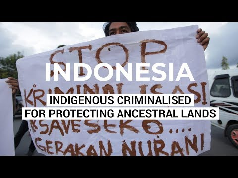 Save Seko - Indigenous Criminalised for Protecting Ancestral Land - Indonesia