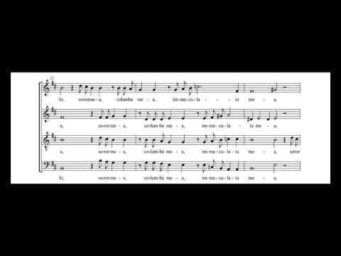 Генрих Шютц - Ego dormio, et cor meum vigilat, SWV 63