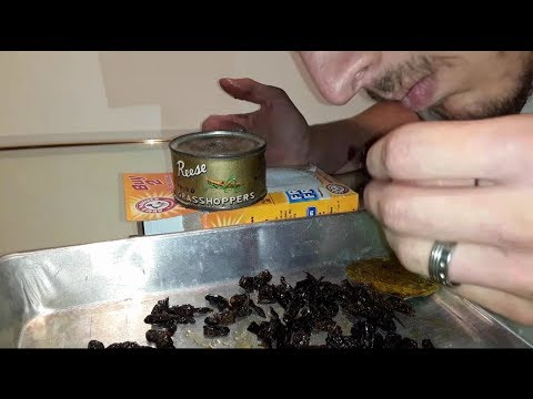 Tasting 70 Year Old Reese Fried Grasshoppers, Opening Decades-old Canned Foods