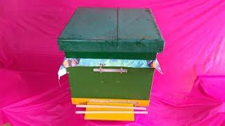 Сборка гнезда пчёл в зиму. Лучший урок начинающим пчеловодам