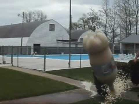 Coke and Mentos Experiment Gone Extremely Wrong!