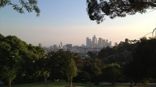Northwest Elysian Park Hiking Trails, Los Angeles