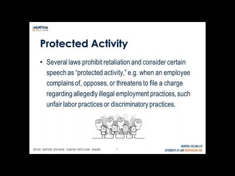 Labor and Employment Webinar: He Said What  Employees' Speech In And Out of Work