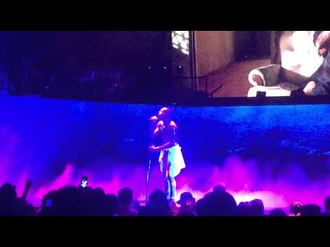 Chris Brown Live in Indianapolis, Indiana One Hell of a Night Tour 8/15/2015