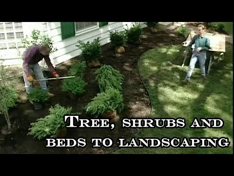 tree planting shrubs and beds