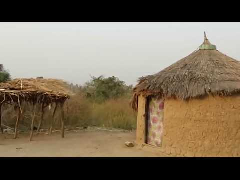 Fulani People, Africa [HD] - Tribes life documentary - Primitive tribes 2018 thumbnail