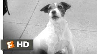 The Artist (9/10) Movie CLIP - Wonder Dog (2011) HD