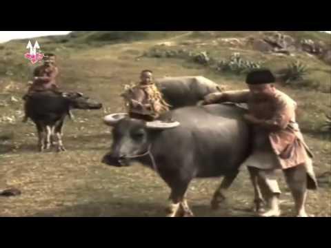 Hài Xuân Mới Nhất   Thằng Cuội,Chú Cuội 1989 – Tập 1  Không Xem Tiếc Cả Đời