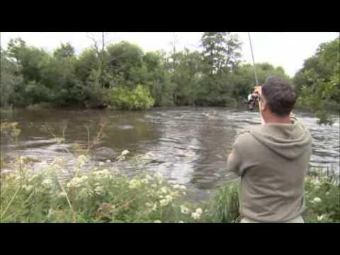 Fishing Gurus - Season 3 - Episode 5 - River Kennet, Wiltshire - Trailer