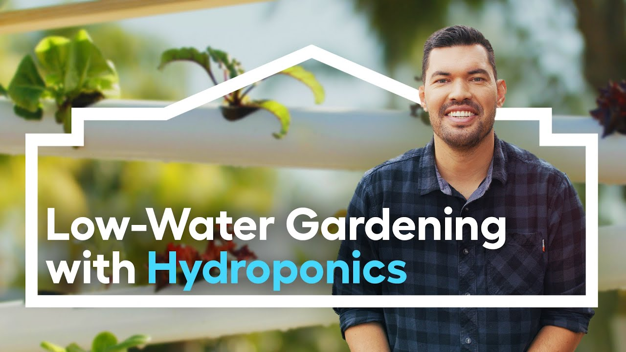 Low-Water Edible Gardening with Hydroponics /// Grow Anywhere