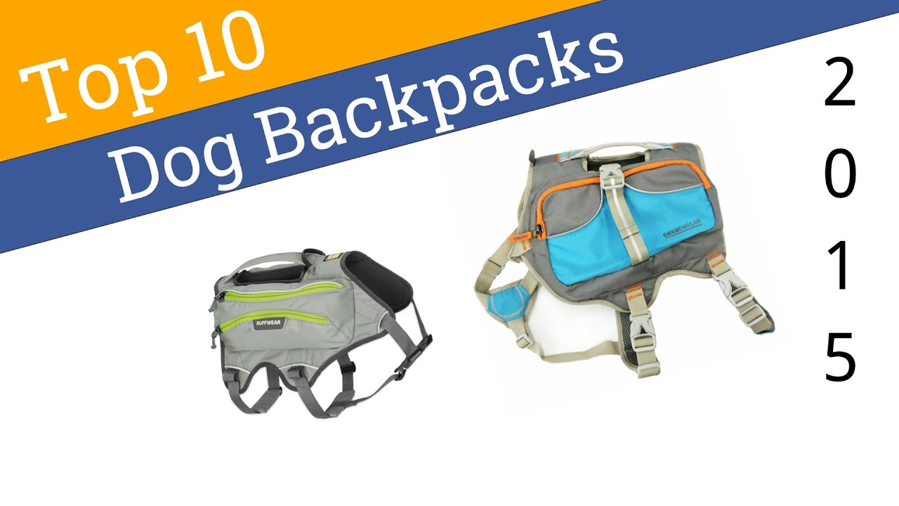 10 Best Dog Backpacks 2015 - YouTube