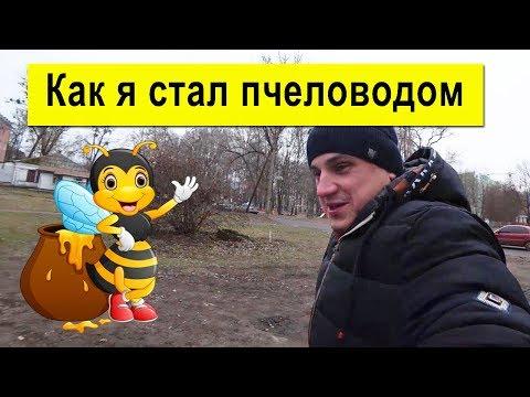 Как я стал пчеловодом ✅ Купить - Продать Пчелопакеты 🐝