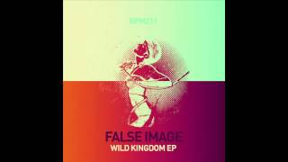 False Image - Ocelot