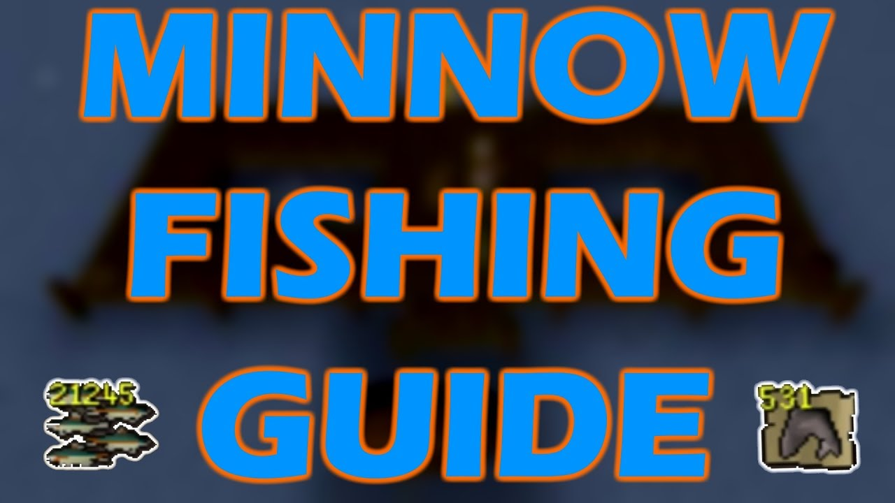 how to get minnows osrs