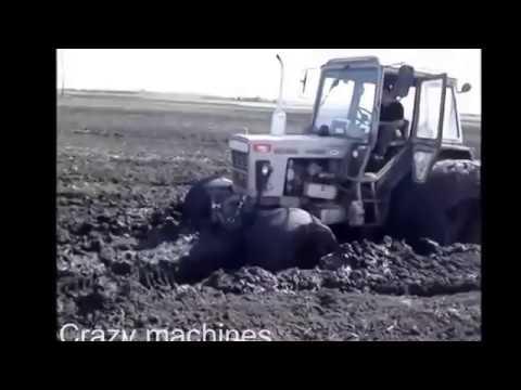 видео емильяненко