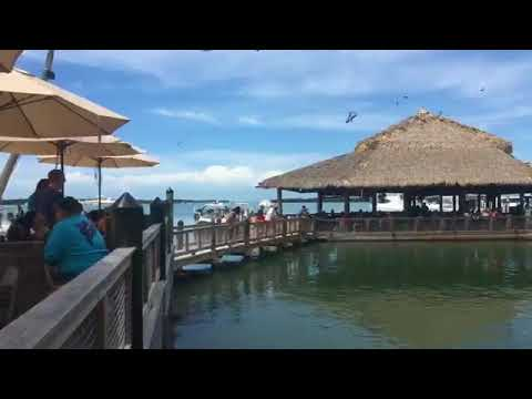 Road Trip!!  Islamorada Fish Company!