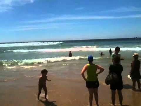 Australian Surfing Championship Manly 2012