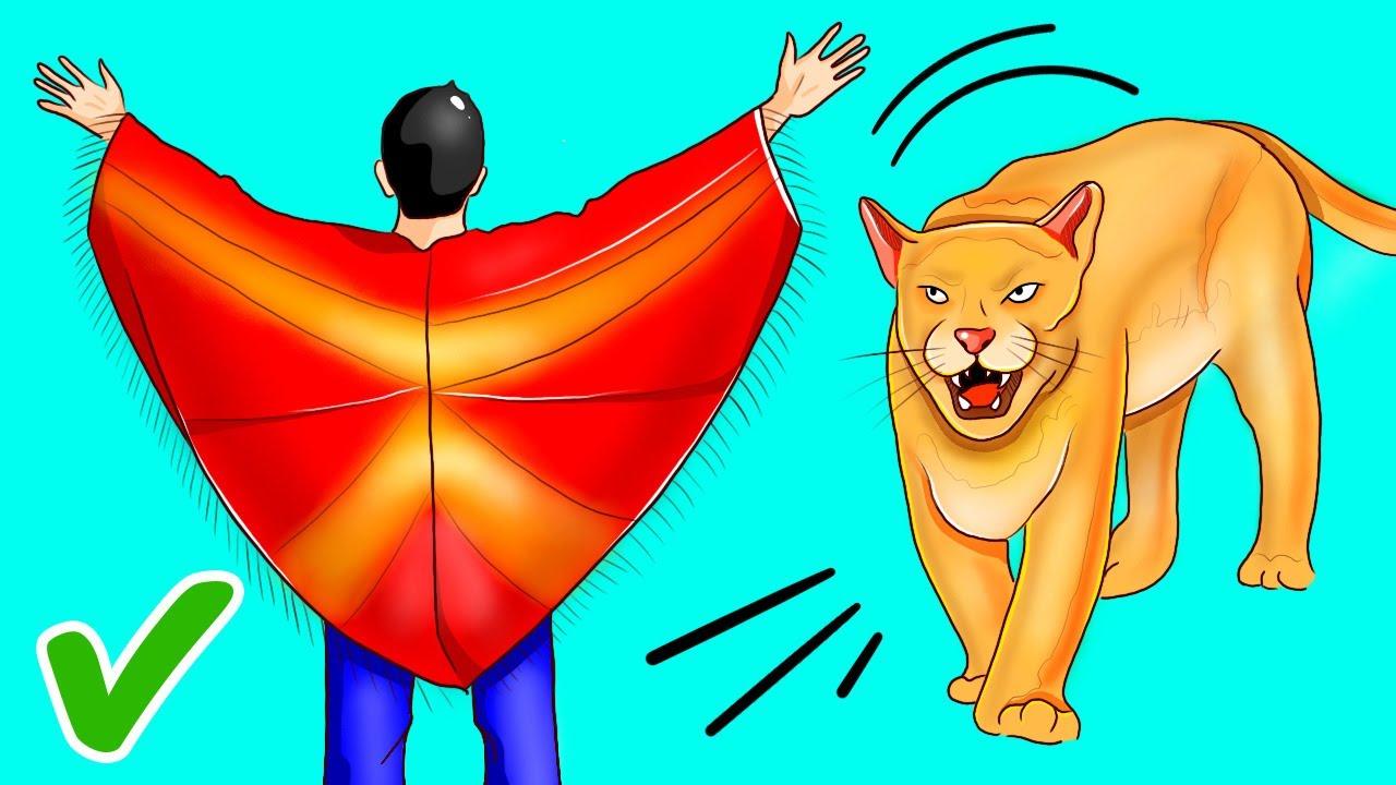 Tips Menghadapi Singa Gunung, Beruang, dan Hewan Liar Lain