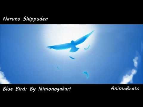 Naruto Shippuden: Blue Bird Male Version