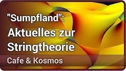 Das Universum, die Stringtheorie und das Sumpfland • Cafe & Kosmos   Florian Wolf